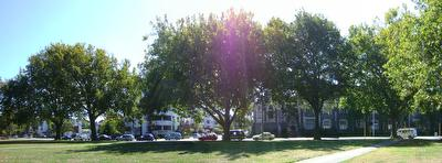 Photo from Cranmer Square in Christchurch, New Zealand, taken on 2009-04-02